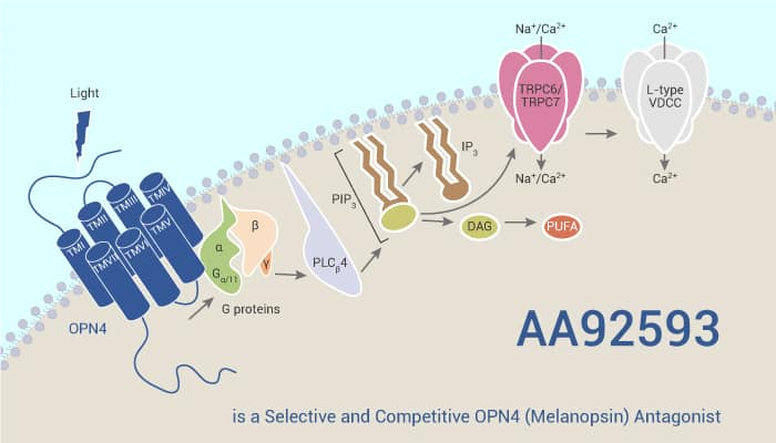 AA92593 is a Selective and Competitive OPN4 Melanopsin Antagonist 2021 06 09 - AA92593 is a Selective and Competitive OPN4 (Melanopsin) Antagonist