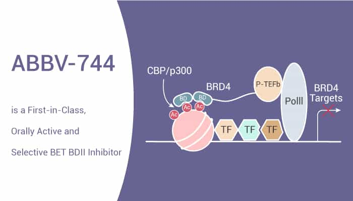 ABBV 744 is a First in Class Orally Active and Selective BET BDII Inhibitor 2021 07 20 - ABBV-744 is a First-in-Class, Orally Active and Selective BET BDII Inhibitor