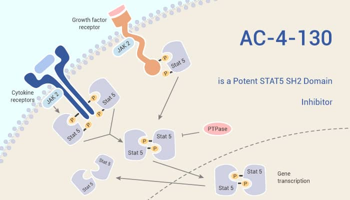AC 4 130 is a Potent STAT5 SH2 Domain Inhibitor 2021 8 14 - AC-4-130 is a Potent STAT5 SH2 Domain Inhibitor