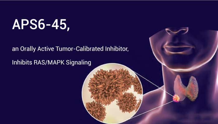 APS6 45 an Orally Active Tumor Calibrated Inhibitor Inhibits RAS MAPK Signaling 202010 31 - APS6-45, an Orally Active Tumor-Calibrated Inhibitor, Inhibits RAS/MAPK Signaling