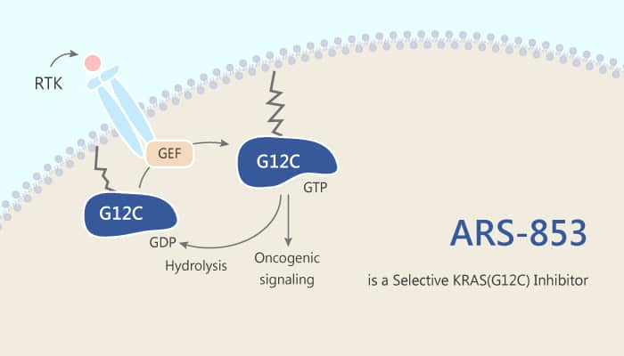 ARS 853 is a Selective KRAS G12C Inhibitor 2019 07 18 - ARS-853 is a Selective KRAS (G12C) Inhibitor