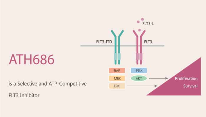 ATH686 is a Selective and ATP Competitive FLT3 Inhibitor 2020 08 18 - ATH686 is a Selective and ATP-Competitive FLT3 Inhibitor