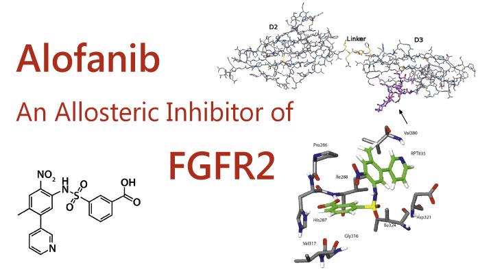 Alofinb - Alofanib, An Allosteric Inhibitor of FGFR2