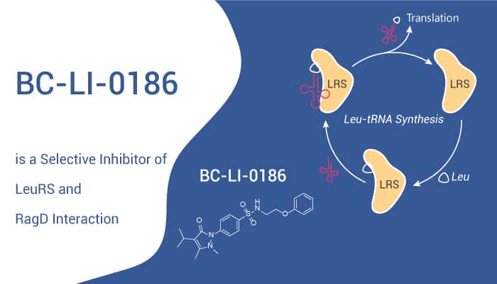 BC LI 0186 is a Selective Inhibitor of LeuRS and RagD Interaction 2020 10 27 - BC-LI-0186 is a Selective Inhibitor of LeuRS and RagD Interaction
