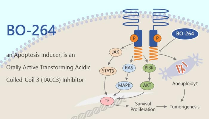 BO 264 an Apoptosis Inducer is an Orally Active Transforming Acidic Coiled Coil 3 TACC3 Inhibitor 2020 05 05 - BO-264, an Apoptosis Inducer, is an Orally Active Transforming Acidic Coiled-Coil 3 (TACC3) Inhibitor