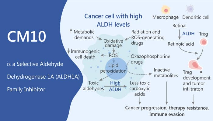 CM10 is a Selective Aldehyde Dehydrogenase 1A Family Inhibitor 2020 04 01 - CM10 is a Selective Aldehyde Dehydrogenase 1A Family Inhibitor