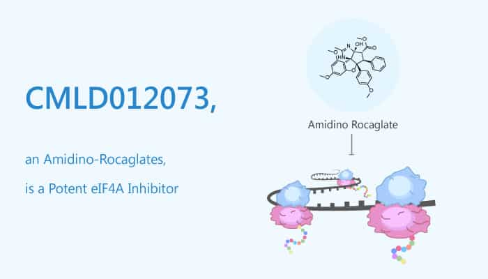 CMLD012073 an Amidino Rocaglates is a Potent eIF4A Inhibitor 2020 09 25 - CMLD012073, an Amidino-Rocaglates, is a Potent eIF4A Inhibitor