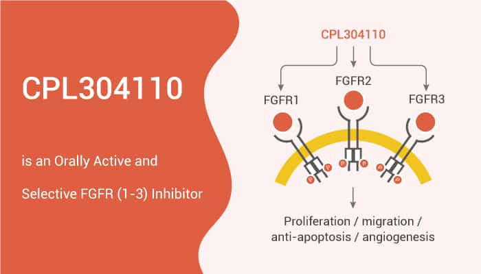 CPL304110 is an Orally Active and Selective FGFR1 3 Inhibitor 2020 01 06 - CPL304110 is an Orally Active and Selective FGFR(1-3) Inhibitor