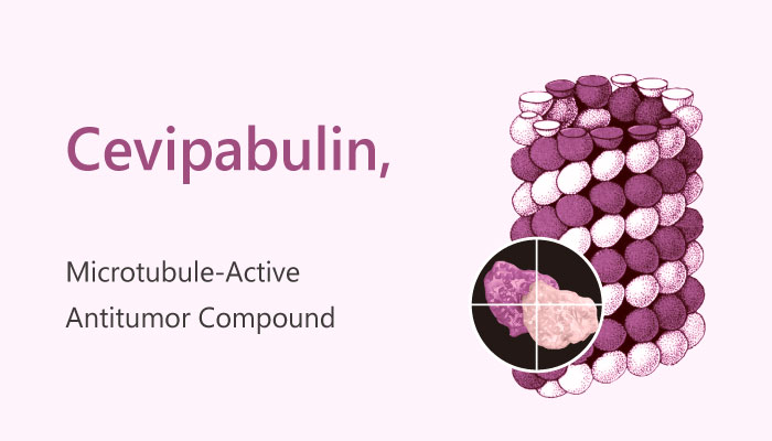 Cevipabulin Microtubule Active Antitumor Compound 2019 04 23 - Cevipabulin (TTI-237) is a Microtubule-Active Antitumor Compound