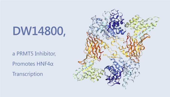 DW14800 a PRMT Inhibitor Promotes HNFα Transcription 2019 08 04 - DW14800, a PRMT5 Inhibitor, Promotes HNF4α Transcription.