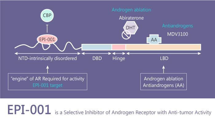 EPI 001 is a Selective Inhibitor of Androgen Receptor with Anti tumor Activity 2020 09 10 - EPI-001 is a Selective Inhibitor of Androgen Receptor with Anti-tumor Activity