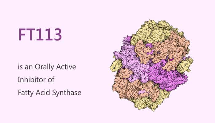 FT113 is an Orally Active Inhibitor of Fatty Acid Synthase FASN 2019 09 06 - FT113 is an Orally Active Inhibitor of Fatty Acid Synthase (FASN)