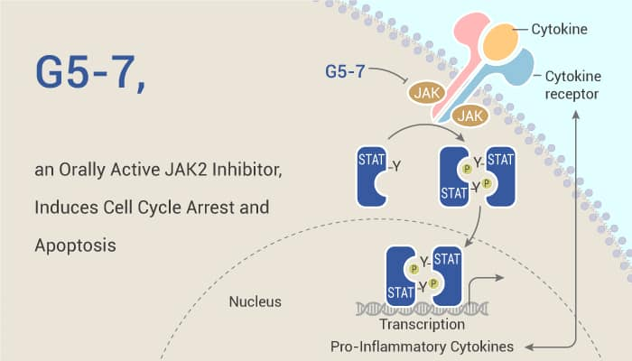 G5 7 an Orally Active JAK2 Inhibitor Induces Cell Cycle Arrest and Apoptosis 2020 01 13 - G5-7, an Orally Active JAK2 Inhibitor, Induces Cell Cycle Arrest and Apoptosis