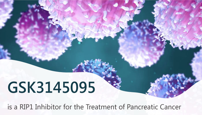 GSK3145095 is a RIP1 Kinase Inhibitor for the Treatment of Pancreatic Cancer 2019 06 06 - GSK3145095 is a RIP1 Kinase Inhibitor for the Treatment of Pancreatic Cancer