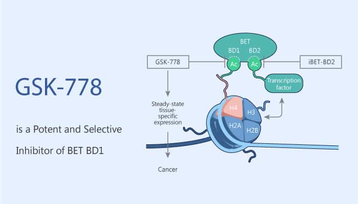 GSK778 is a Potent and Selective Inhibitor of BET BD1 2020 07 30 - GSK778 is a Potent and Selective Inhibitor of BET BD1