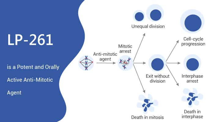 LP 261 is a Potent and Orally Active Anti Mitotic Agent 2021 07 03 - LP-261 is a Potent and Orally Active Anti-Mitotic Agent