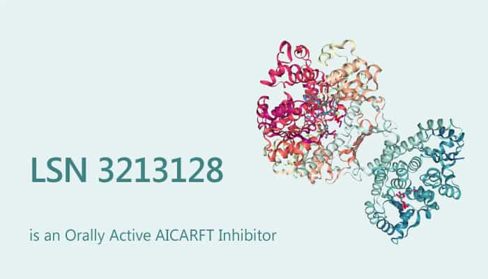 LSN 3213128 is an Orally Active AICARFT Inhibitor 2019 08 05 - LSN 3213128 is an Orally Active AICARFT Inhibitor