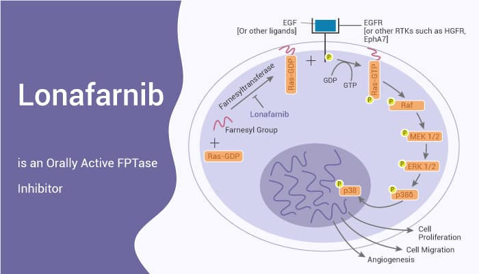 Lonafarnib is an Orally Active FPTase Inhibitor 2021 05 22 - Lonafarnib is an Orally Active FPTase Inhibitor