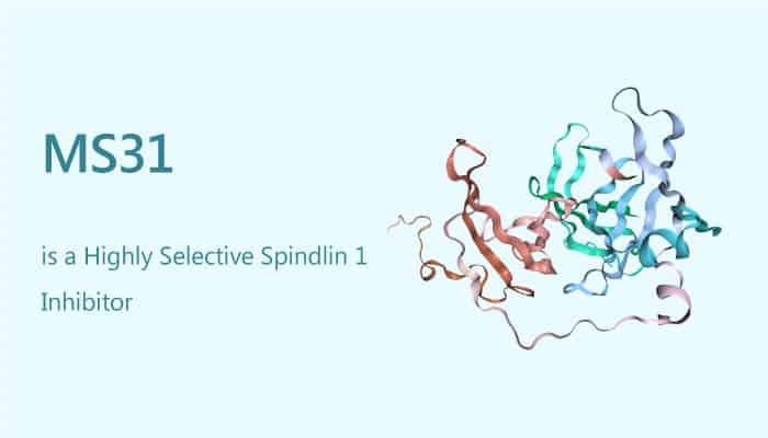 MS31 is a Highly Selective Spindlin 1 Inhibitor 2019 08 24 - MS31 is a Highly Selective Spindlin 1 Inhibitor
