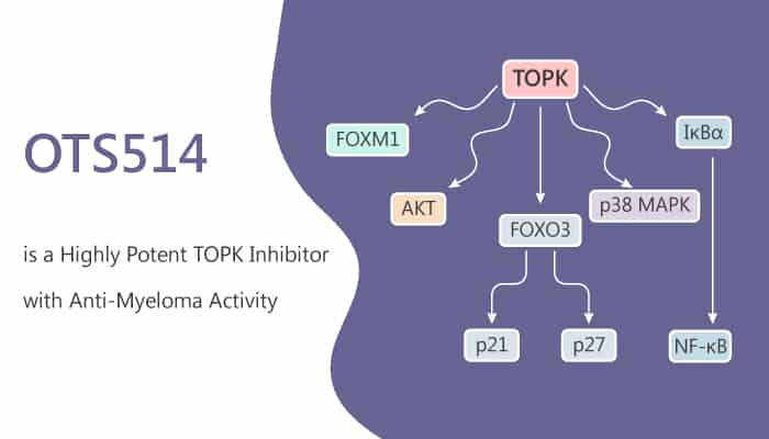 OTS514 is a Highly Potent TOPK Inhibitor with Anti Myeloma Activity 2020 05 19 - OTS514 is a Highly Potent TOPK Inhibitor with Anti-Myeloma Activity