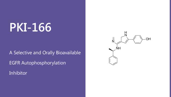 PKI 166 is a Selective and Orally Bioavailable EGFR Autophosphorylation Inhibitor 2020 01 30 - PKI-166 is a Selective and Orally Bioavailable EGFR Autophosphorylation Inhibitor