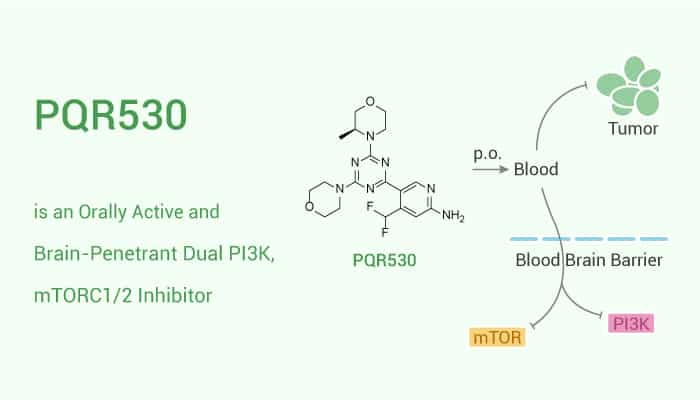 PQR530 is an Orally Active and Brain Penetrant Dual PI3K mTORC12 Inhibitor 2020 11 28 1 - PQR530 is an Orally Active and Brain-Penetrant Dual PI3K, mTORC1/2 Inhibitor