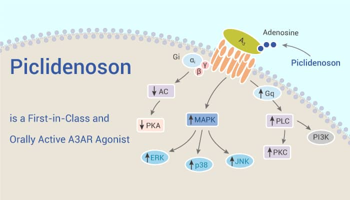 Piclidenoson is a First in Class and Orally Active A3AR Agonist 2021 02 11 - Piclidenoson is a First-in-Class and Orally Active A3AR Agonist