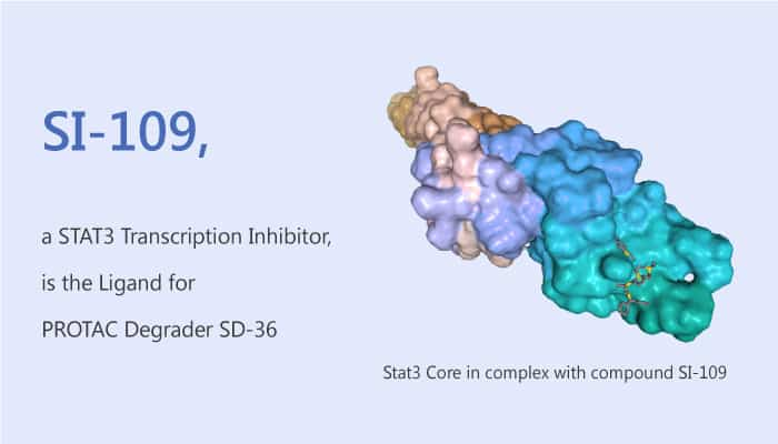SI 109 a STAT3 Transcription Inhibitor is the Ligand of PROTAC Degrader SD 36 2019 12 08 - SI-109, a STAT3 Transcription Inhibitor, is the Ligand of PROTAC Degrader SD-36