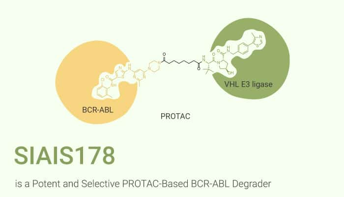 SIAIS178 is a Potent and Selective PROTAC Based BCR ABL Degrader 2020 11 19 - SIAIS178 is a Potent and Selective PROTAC-Based BCR-ABL Degrader