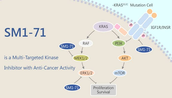 SM1 71 is a Multi Targeted Kinase Inhibitor with Anti Cancer Activity 2020 09 02 - SM1-71 is a Multi-Targeted Kinase Inhibitor with Anti-Cancer Activity