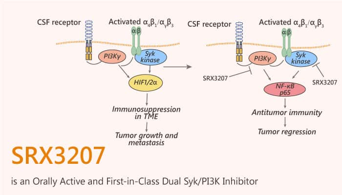 SRX3207 is an Orally Active and First in Class Dual Syk PI3K Inhibitor 2020 10 06 - SRX3207 is an Orally Active and First-in-Class Dual Syk/PI3K Inhibitor