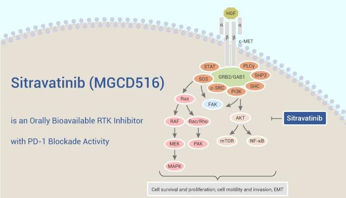 Sitravatinib MGCD516 is an Orally Bioavailable RTK Inhibitor with PD 1 Blockade Activity 2021 06 03 - Sitravatinib (MGCD516) is an Orally Bioavailable RTK Inhibitor with PD-1 Blockade Activity