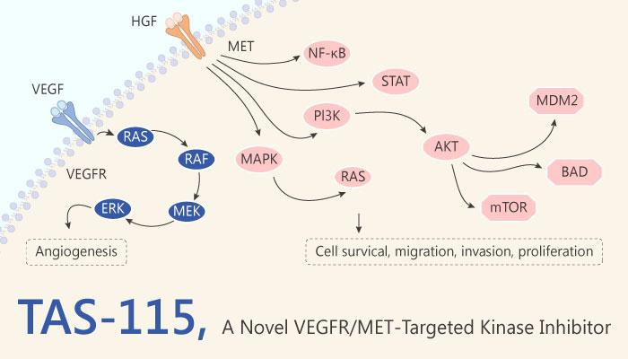 TAS 115 Multiple Tyrosine Kinases Inhibitor bone cancer 2019 04 19 - Multiple Tyrosine Kinases Inhibitor TAS-115