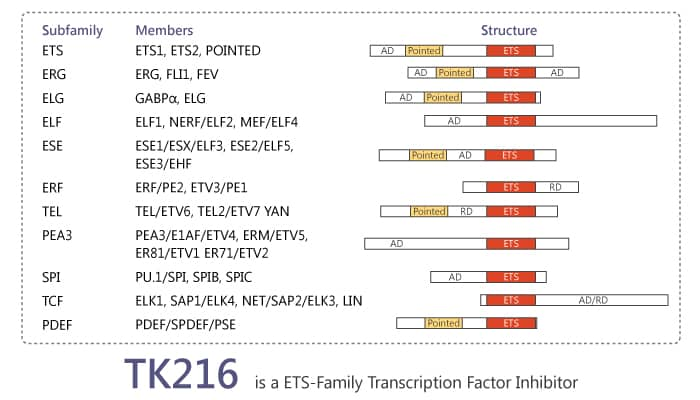 TK216 is an ETS Transcription Factor Inhibitor for Treatment of Ewing Sarcoma 2019 12 22 - TK216 is an ETS Transcription Factor Inhibitor for Treatment of Ewing Sarcoma