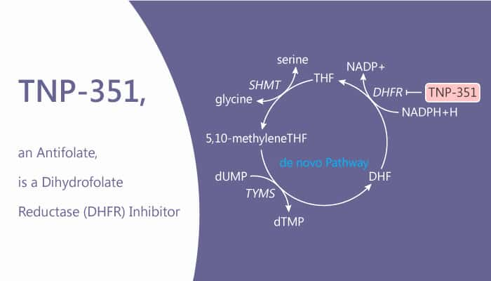 TNP-351, an Antifolate, is a Dihydrofolate Reductase (DHFR) Inhibitor