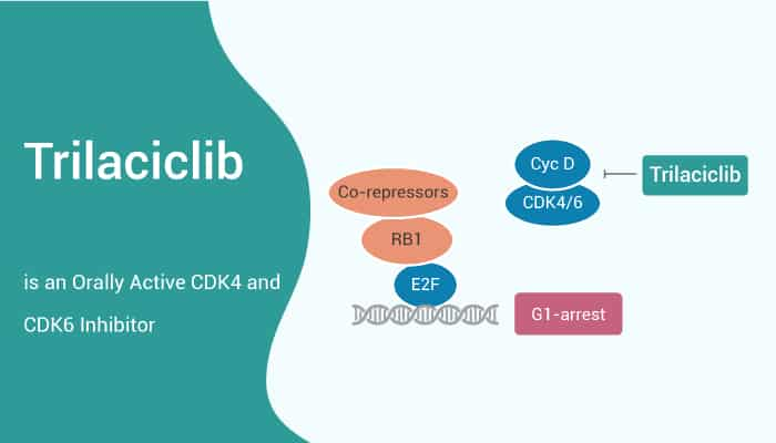 Trilaciclib is an Orally Active CDK4 and CDK6 Inhibitor 2021 05 29 - Trilaciclib is an Orally Active CDK4 and CDK6 Inhibitor