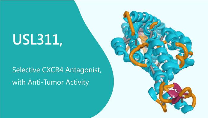 USL311 Selective CXCR4 Antagonist with Anti Tumor Activity 2019 05 21 - USL311 is a Selective CXCR4 Antagonist, with Anti-Tumor Activity