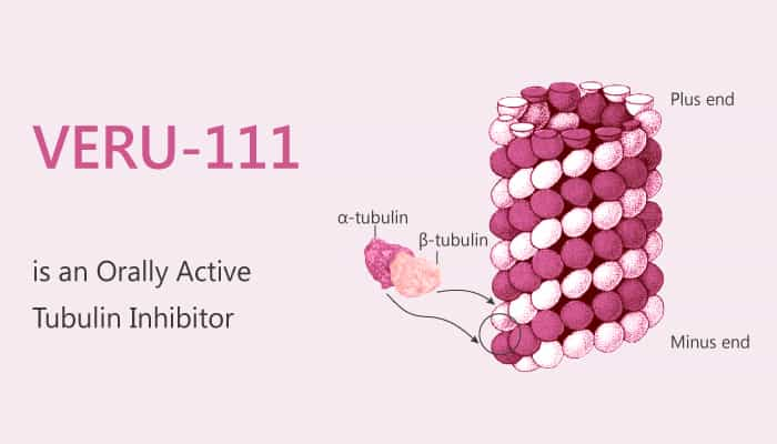 VERU 111 is an Orally Active Tubulin Inhibitor 2019 08 10 - VERU-111 is an Orally Active Tubulin Inhibitor