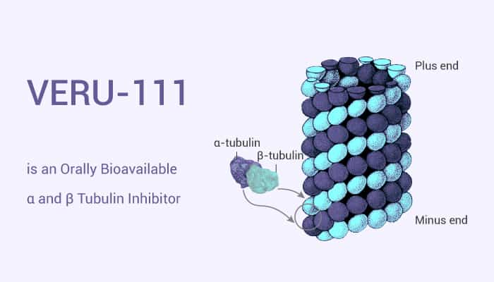 VERU 111 is an Orally Bioavailable α and β Tubulin Inhibitor 2020 12 10 - VERU-111 is an Orally Bioavailable α and β Tubulin Inhibitor
