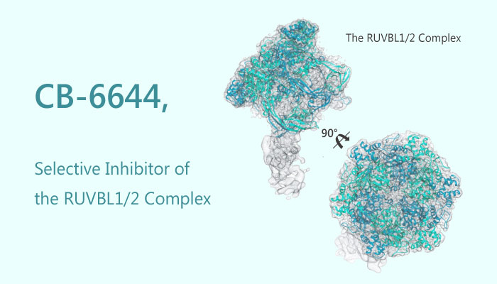 CB 6644 Inhibitor of the RUVBL12 Complex Acute leukemia 2019 05 01 - CB-6644 is an Inhibitor of the RUVBL1/2 Complex