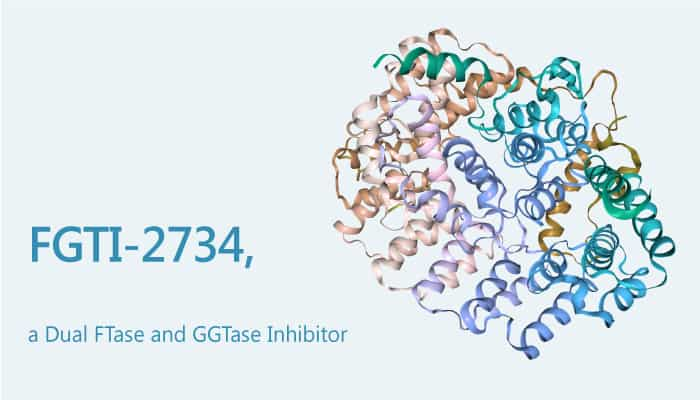 FGTI 2734 a Dual FTase and GGTase Inhibitor Has Potential to Treat KRAS mutant Cancer 2019 07 24 - FGTI-2734, a Dual FTase and GGTase Inhibitor, Has Potential to Treat KRAS-mutant Cancer