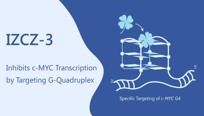 IZCZ 3 is an Anticancer Agent by Blocking c MYC Transcription 2019 06 07 - IZCZ-3 is an Anticancer Agent by Blocking <i>c-MYC</i> Transcription