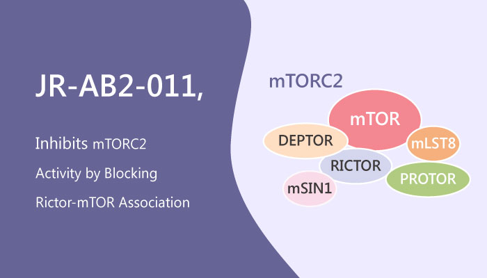 JR AB2 011 Inhibitor of mTORC2 Activity in Glioblastoma Multiform GBM 2019 05 13 - JR-AB2-011, a Potential Inhibitor of mTORC2 Activity in Glioblastoma Multiforme (GBM)