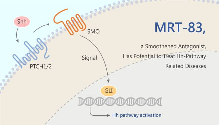 MRT 83 a Potent Smoothened Antagonist has Potential to Treat Hh pathway Related Diseases 2019 07 10 - MRT-83, a Potent Smoothened Antagonist, has Potential to Treat Hh-pathway Related Diseases