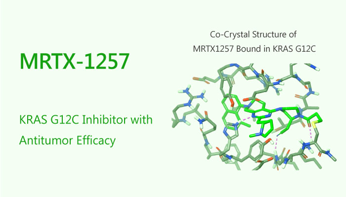 MRTX 1257 KRAS G12C Inhibitor Antitumor pancreas cancer colorectal cancer NSCLC 2019 05 09 - MRTX-1257 is a KRAS G12C Inhibitor with Antitumor Efficacy