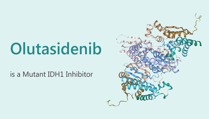 Olutasidenib is a Mutant IDH1 Inhibitor for the Treatment of AML or MDS 2019 06 10 - Olutasidenib is a Mutant IDH1 Inhibitor for the Treatment of AML or MDS